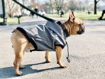 Kurtka przeciwdeszczowa dla psa grafitowa