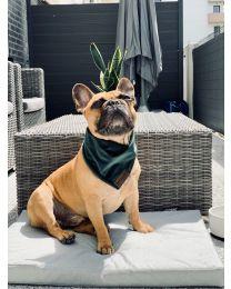 Bandamka dla psa zielona