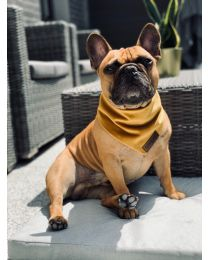 Bandamka dla psa złota
